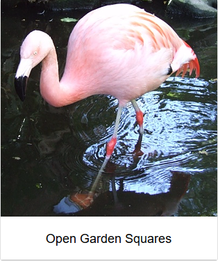 2006 - Open Garden Squares thumb