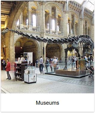 2009 - Museums