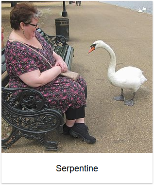 2013 - Serpentine thumb