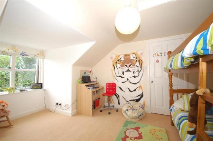 Tiger mural 2013