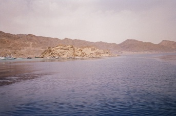 Took a boat trip out across the Red Sea to Egypt. Others took a launch to tour this alledgedly medieval fort on 'Pharoah's Isle' but we just jumped in and went for a snorkel.