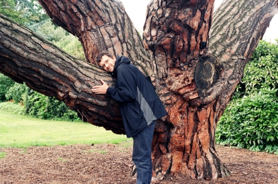 See I told you it was his favourite tree.
