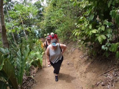 We are led on a steep climb up Little Tobago