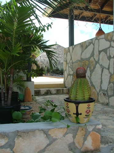 This is the entrance to the pool area (complete with Turks Head cactus)