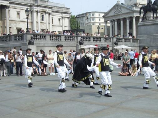 Westminster Troop