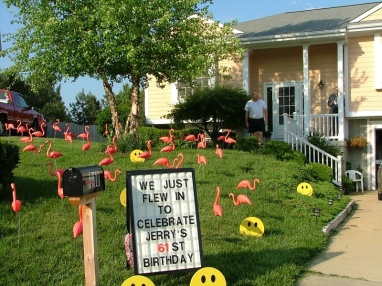 Jerry woke up on his birthday to find a flock of flamingos in his front yard