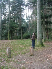 Andy spots a woodpecker. His first.