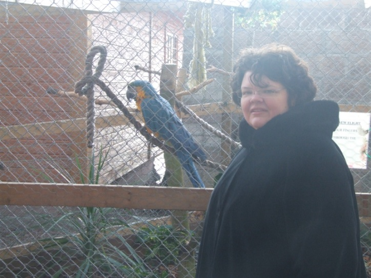 Mystic the parrot