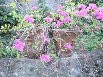 The villa has a massive garden requiring fulltime gardening staff (Terry & John), many of the plants are in the traditional island face pots.