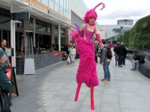 Flamingo @ Westfield