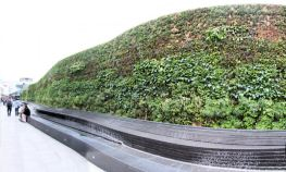 Living Wall @ Westfield Southern Terrace