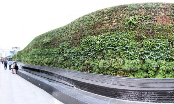 Living Wall @ Westfield Southern Terrace
