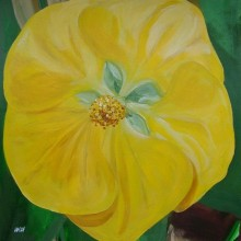 Yellow Flower (30x30cm acrylic December 2005)
