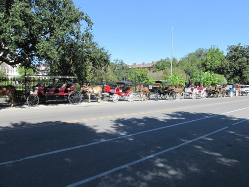 Horse drawn carriages line up along the side of Jackson Square.
