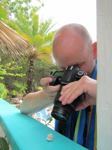 Macro photography.