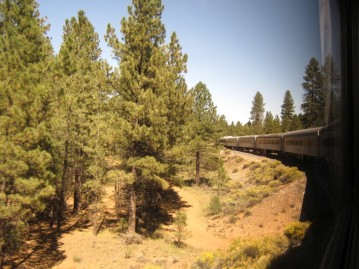 Then it's onto the train into the park, some of the carriages are old Amtrak California Zephyr cars.