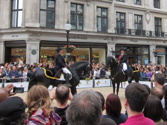 Spanish horses (walking backwards)