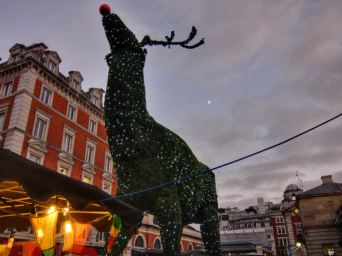 Rudolph @ Covent Garden christmas market