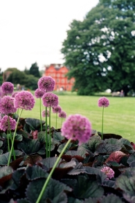 Kew Palace. More experimentation with f stops on the Pentax. We rather liked this shot, but it isn't quite there in my opinion.