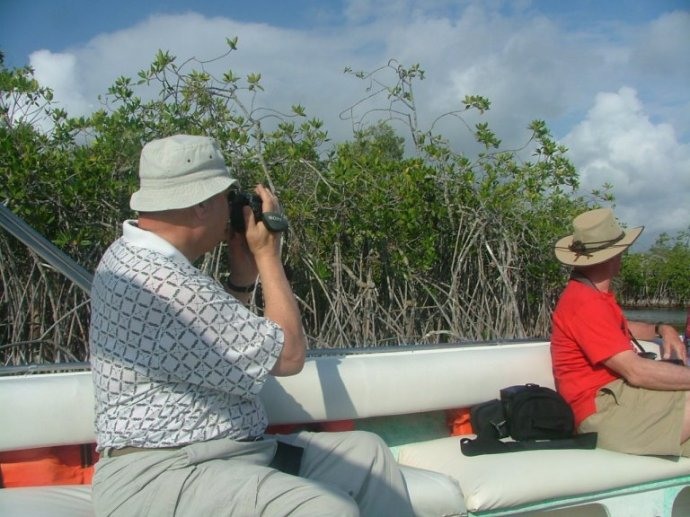 We went on a day trip with Tanisha Eco Tours, who tooks us to the mainland and up North River through the mangroves...