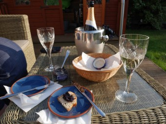 Champagne and caviar on the patio