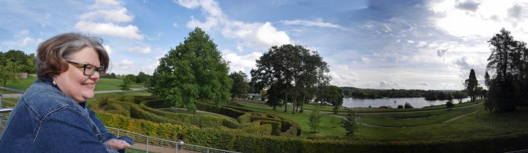 view from centre of maze