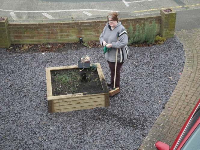 The bloody foxes keep digging up our raised bed