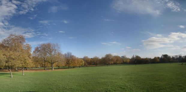 Primrose Hill and ZSL aviary
