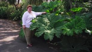 Michelle with a gunella plant.