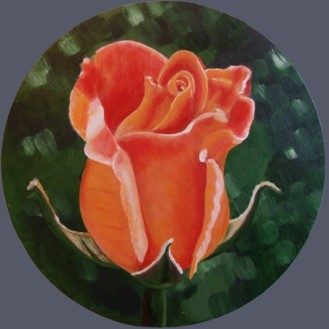 Rose Bud in Paddington Recreation Ground (30cm acrylic September 2006)