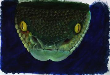 Snake (30x20cm acrylic 2004)