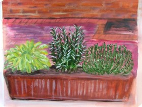 Herb Windowbox (40x30cm acrylic May 2005)