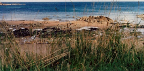 Coldingham Beach