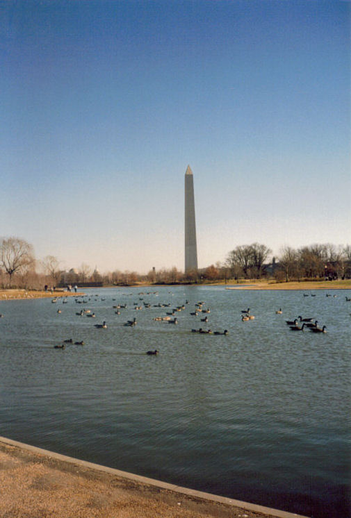 Washington Memorial, New Years 1988