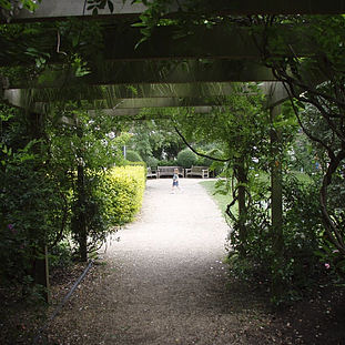 2007 - Open Garden Squares