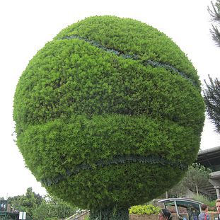 2013 - Wimbledon thumb