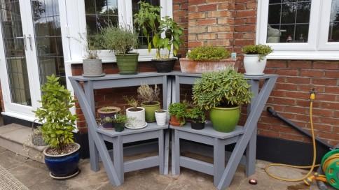 New plant pots