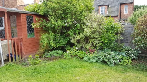 Dank garden