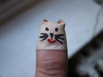 cat finger