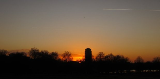 cormorants fly over sunset in Hyde Park
