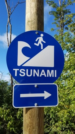 Tsunami water park
